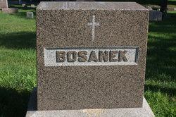 James Bosanek