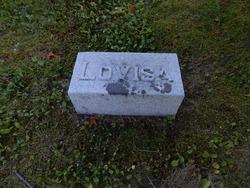 Lovisa M. <I>Daniels</I> Cook