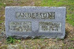 Georgianna Anna <I>Grimes</I> Anderson