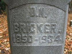 David Newton Bricker