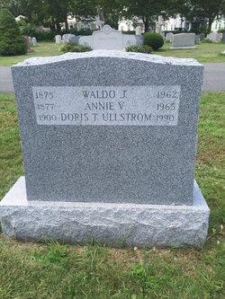 Waldo J Tyler