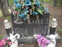 Wayne Lakes