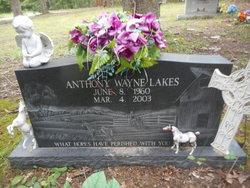 Anthony Wayne Lakes