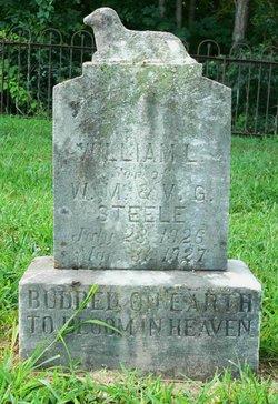 William L Steele