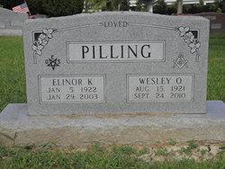 Elinor Katherine <I>Stetson</I> Pilling