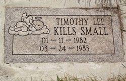 Timothy Lee Kills Small