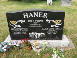 """James William """"Bill"""" Haner"""