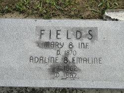 Mary <I>Shaner</I> Fields