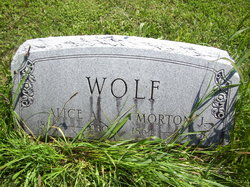 Alice A Wolf