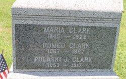 Pulaski J Clark