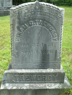 Hiram C Treworgy