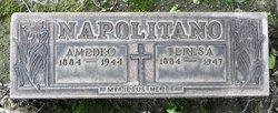 Teresa <I>Verrachio</I> Napolitano