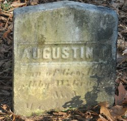 Augustin T Gray