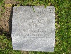 Everrett R Stevens