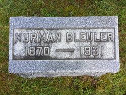 Norman Bleuler