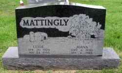 Joann Marie <I>Cecil</I> Mattingly