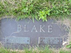 Stanley E. Blake