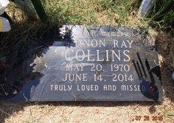 Vernon Ray Collins