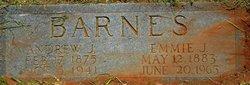 Emmie Jane <I>Alderson</I> Barnes