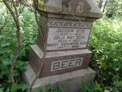Mary Catherine <I>Dickinson</I> Beer