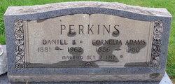 "Mary Cornelia ""Nean"" <I>Adams</I> Perkins"