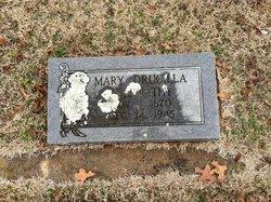 Mary Drucilla Abernathy