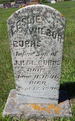 Leslie Wilbur Burns