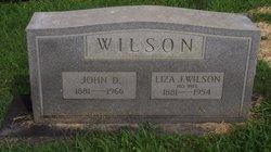Liza J Wilson