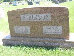 James Wilson Atkinson