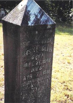 James Knox Polk Hollis