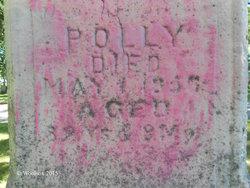 Polly <I>Williams</I> Wellman
