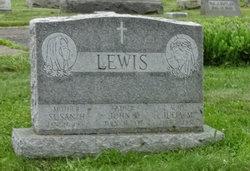 Susan H Lewis