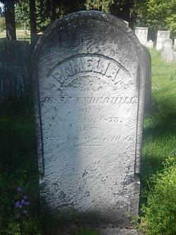 Pamelia <I>Purdy</I> Underhill