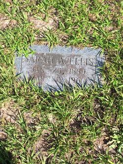 Sarah Alice Ellis