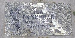 Ila Bankhead