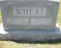 Viola <I>Burgess</I> Wheat