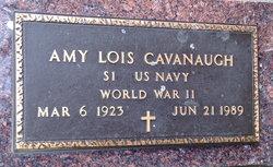 Amy Lois <I>Wehrkamp</I> Cavanaugh