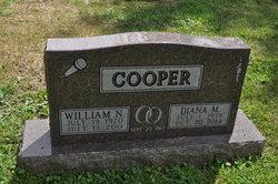 Diane <I>Bacon</I> Cooper