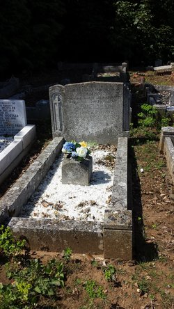 Eliza <I>Badcock</I> Gifford