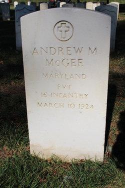 Andrew M McGee