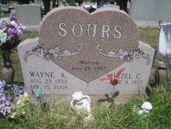 Wayne Austin Sours