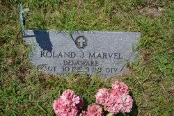 Sgt Roland James Marvel