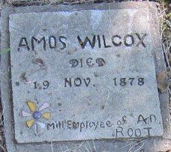Amos Wilcox