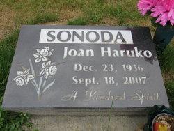 Joan Haruko <I>Ichikawa</I> Sonoda