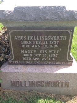Vitelous L Hollingsworth