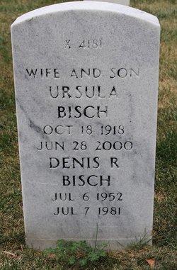 Denis R Bisch