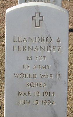 Leandro A Fernandez