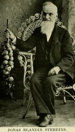 Jonas Blandin Stebbins