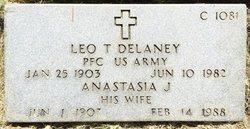 Anastasia J Delaney