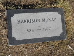 Harrison McKay